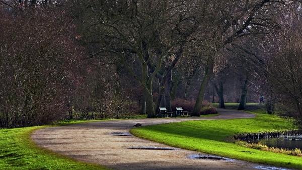 curvas no parque