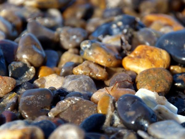 um mar de pedras