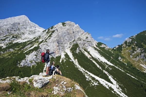 montanhas cao olhar vista caminhadas facilitar