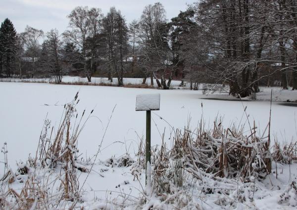 belo agradavel inverno de neve geada