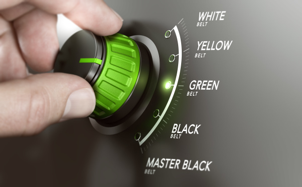 certificacao de gestao lean cinturao verde