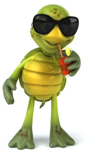 tartaruga, divertida - 28218390
