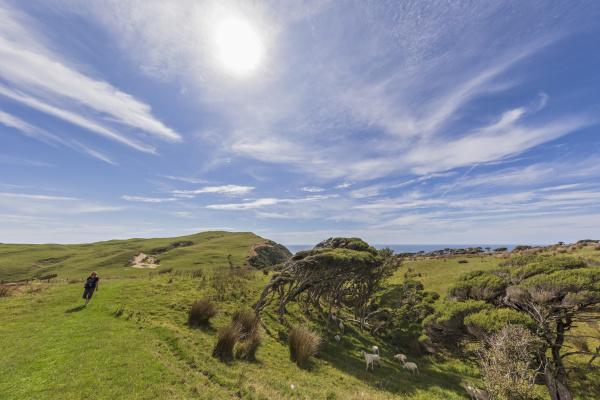 nova zelandia sol brilhando sobre turista
