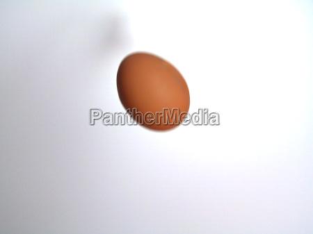 voo futuro queda caso ovo incerto