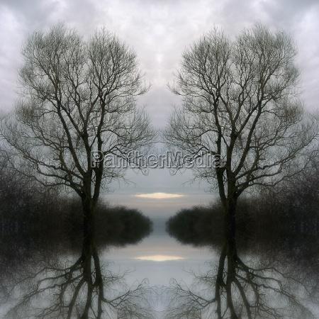 magica lago