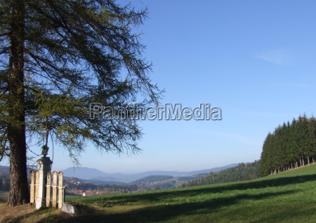 the bavarian forest