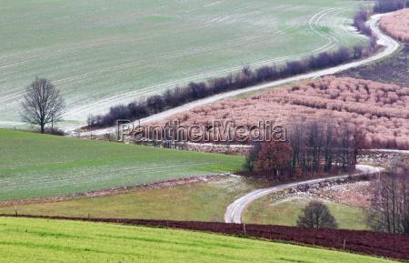 winter path way scenery countryside nature