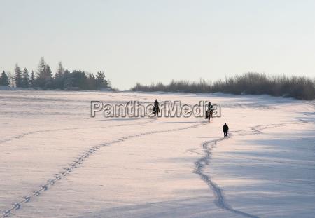 trilhas na neve