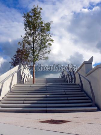 azul escalera arbol nuevo caucasico hamburgo