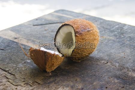 polpa aberto campal coco