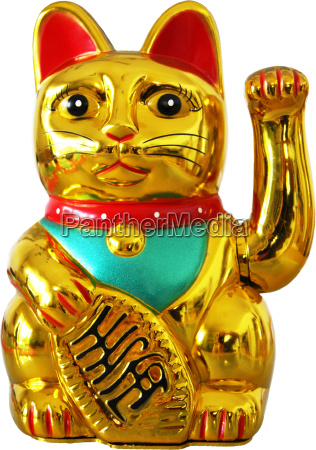 pompa japao gato ressaca dinheiro