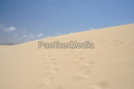 sand dune on fuerteventura