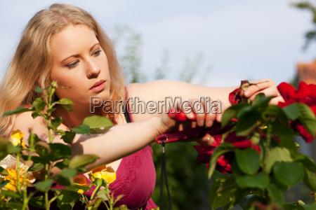 garden gardening in rosary