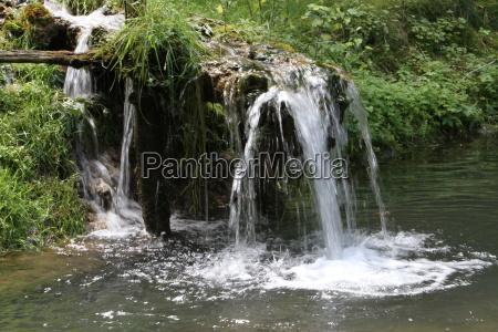 planta verde ribeiro bavaria cachoeira gotas