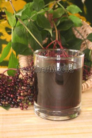 drink elder