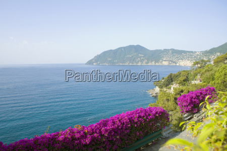 panoramic, view, of, the, sea, , italian - 3592113