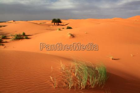 sanduenen in morocco