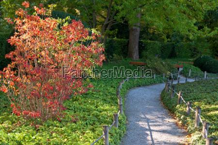 autumn in the botanical garden