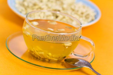 cha medicina plantas medicinais