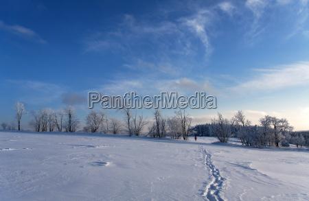 walking through winter landscape