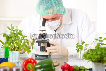 investigador que sustenta um vegetal do