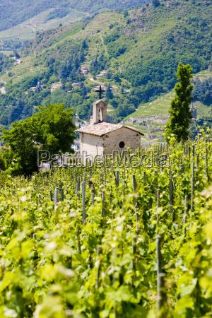 grand cru vineyard e capela de