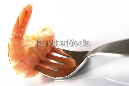 gourmet marisco frutos do mar delicadeza