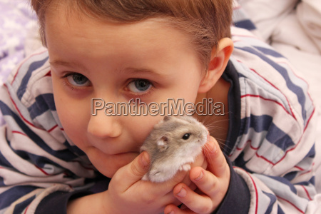 amizade animal de estimacao hamster amor