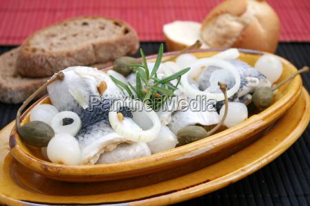 alimento peixe peixes arenque bufe lanche