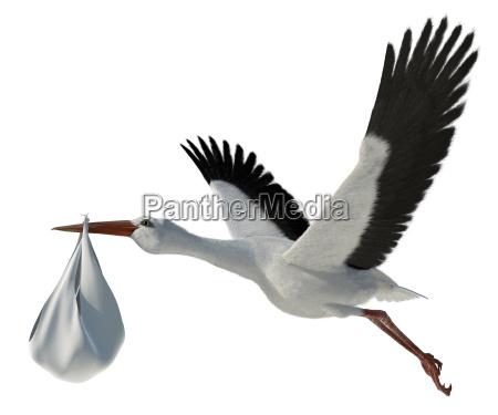 nascimento bebe infantil cegonha adocao voar