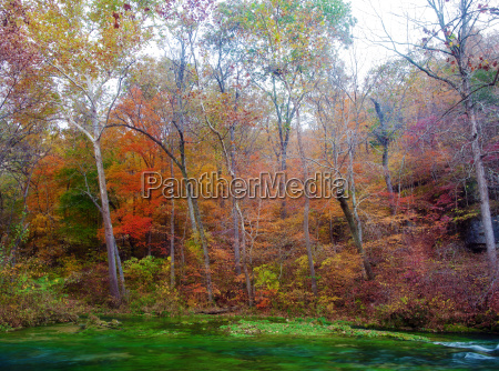 autumn, leaves, and, trees, on, river - 4697152