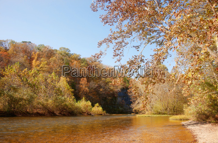autumn leaves and trees on river
