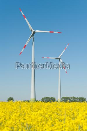 turbinas eolicas em um campo de