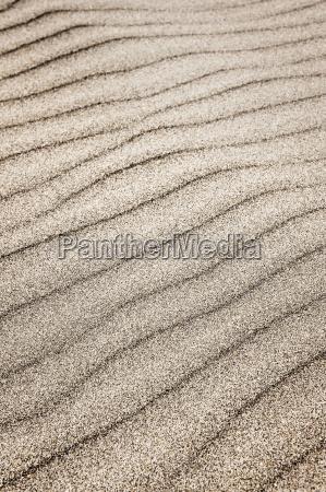 sand ripples background