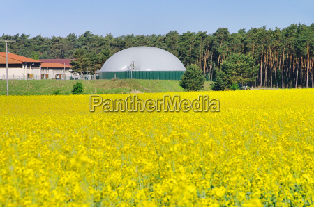planta de biogas rapsfeld plano de