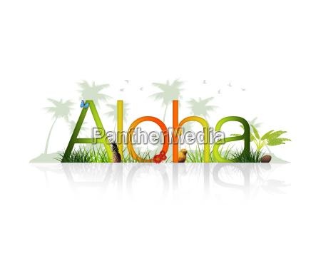 aloha havai