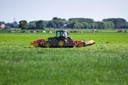agricultura holanda pais holandes paisagem natureza