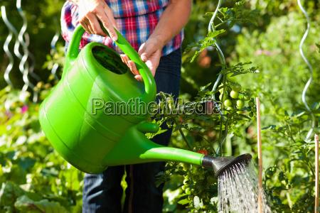 mulher jardim verao jardineiro jardinagem jardins