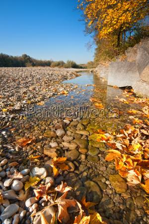 autumnal lech
