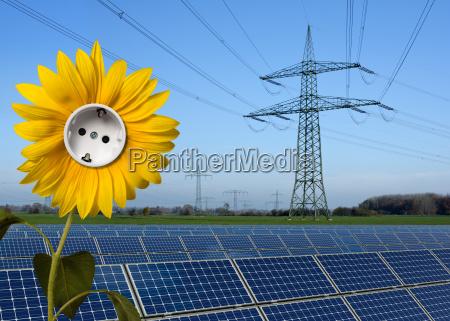 parque solar girassol com soquete e