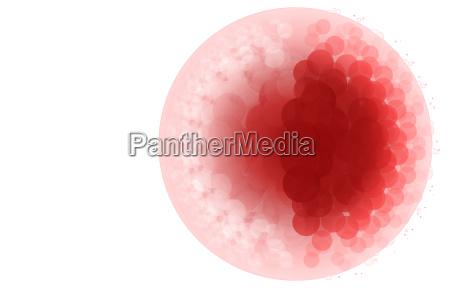 grafico ilustracao celula nucleo da celula