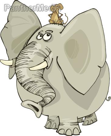 elefante com rato