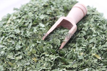 vegetal seco repolho erva ervas