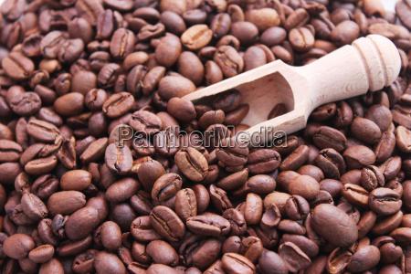 feijoes cafe enferrujados graos de cafe
