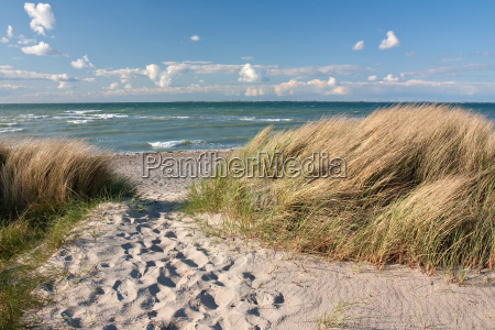 caminho para a praia de dunas