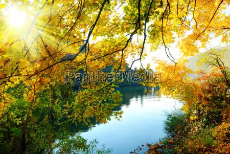 autumn magic on the river