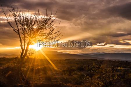 nascer do sol espetacular do deserto