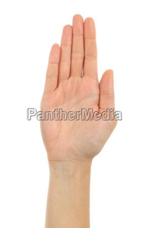 mao da palma da mulher na