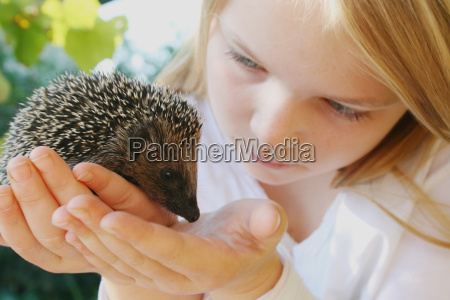 hand wild animals protect protection contactor