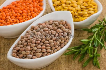 variedades diferentes da lentilha em bacias
